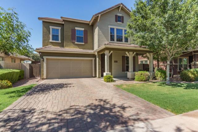 3560 E Palo Verde Street, Gilbert, AZ 85296 (MLS #5789557) :: The Bill and Cindy Flowers Team