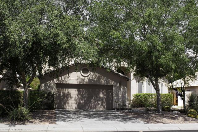 1370 S Quail Lane, Gilbert, AZ 85233 (MLS #5789600) :: The Garcia Group