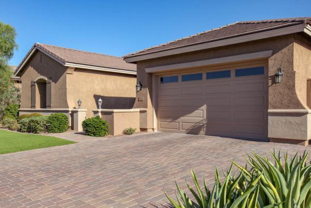 681 W Grand Canyon Drive, Chandler, AZ 85248 (MLS #5789825) :: Relevate   Phoenix