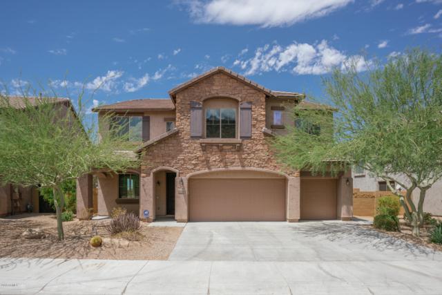 27842 N Sierra Sky Drive, Peoria, AZ 85383 (MLS #5790010) :: RE/MAX Excalibur