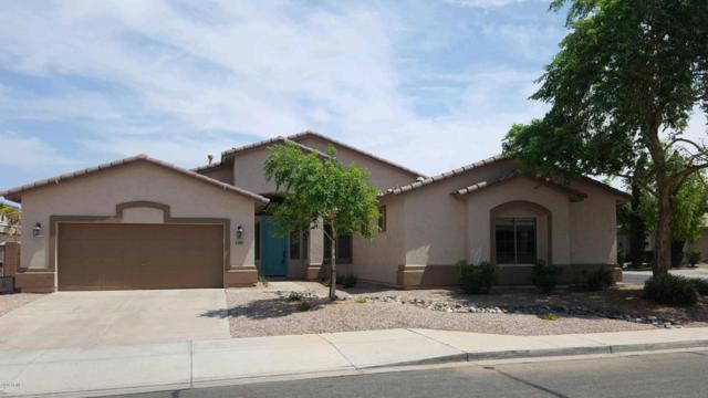 6009 N 133RD Drive, Litchfield Park, AZ 85340 (MLS #5790284) :: The W Group