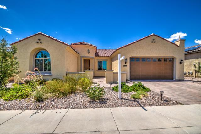4196 N Potomac Drive, Florence, AZ 85132 (MLS #5790730) :: RE/MAX Excalibur