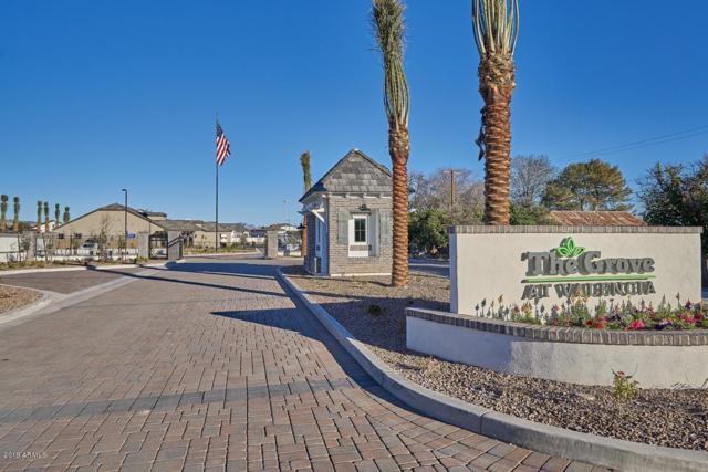 4513 E Fountain Street, Mesa, AZ 85205 (MLS #5791074) :: Arizona 1 Real Estate Team