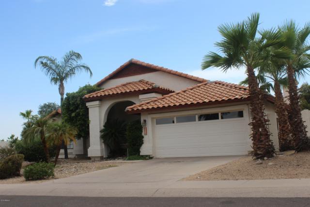 13086 N 104TH Street, Scottsdale, AZ 85260 (MLS #5791257) :: Arizona 1 Real Estate Team