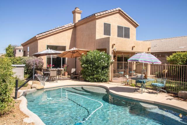 31053 N 44TH Way, Cave Creek, AZ 85331 (MLS #5791358) :: Lux Home Group at  Keller Williams Realty Phoenix