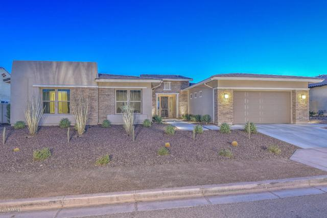 30544 N 117th Drive, Peoria, AZ 85383 (MLS #5791506) :: The Jesse Herfel Real Estate Group