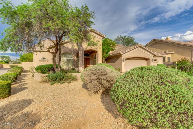 1081 N Brandon Drive, Chandler, AZ 85226 (MLS #5791525) :: Yost Realty Group at RE/MAX Casa Grande