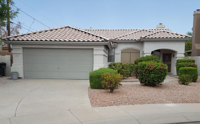 16230 N 38TH Way, Phoenix, AZ 85032 (MLS #5791679) :: Lucido Agency