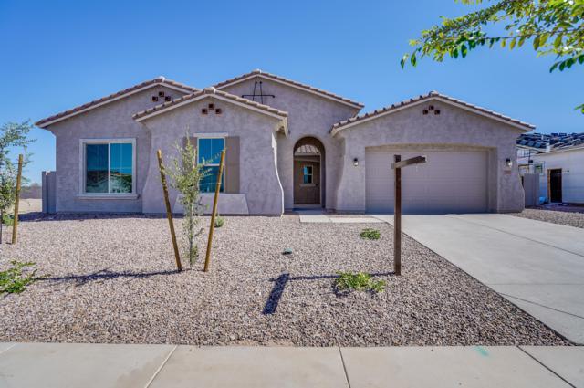 19417 S 194TH Way, Queen Creek, AZ 85142 (MLS #5791949) :: Team Wilson Real Estate
