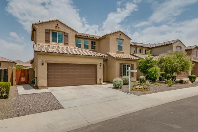 1828 W Desperado Way, Phoenix, AZ 85085 (MLS #5791952) :: The Laughton Team