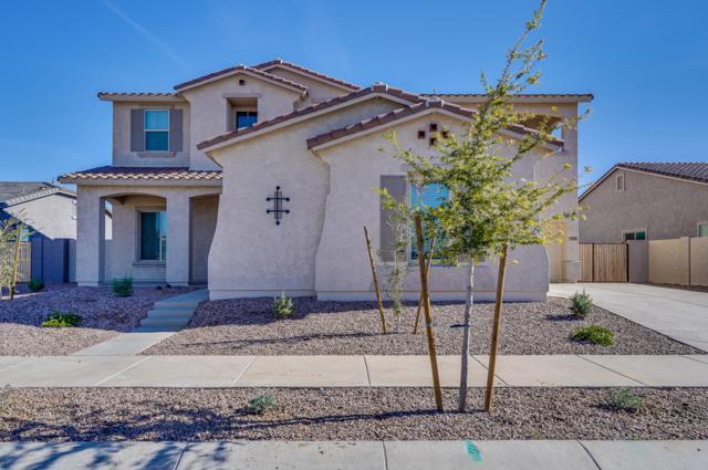 19461 S 194TH Way, Queen Creek, AZ 85142 (MLS #5791979) :: Scott Gaertner Group