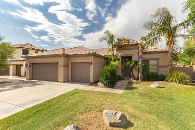 1720 E Redwood Place, Chandler, AZ 85286 (MLS #5792312) :: Yost Realty Group at RE/MAX Casa Grande