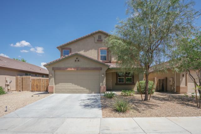 12112 W Daley Lane, Sun City, AZ 85373 (MLS #5793049) :: Team Wilson Real Estate