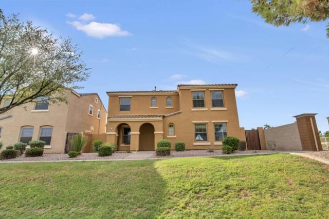 2667 E Bart Street, Gilbert, AZ 85295 (MLS #5793331) :: Yost Realty Group at RE/MAX Casa Grande
