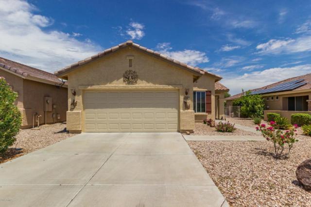 22868 W Twilight Trail, Buckeye, AZ 85326 (MLS #5793361) :: The Worth Group