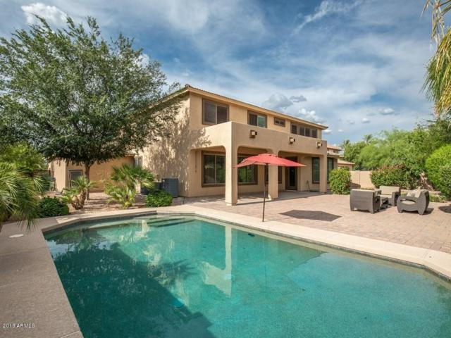 2955 E Mahogany Place, Chandler, AZ 85249 (MLS #5793395) :: The Everest Team at My Home Group