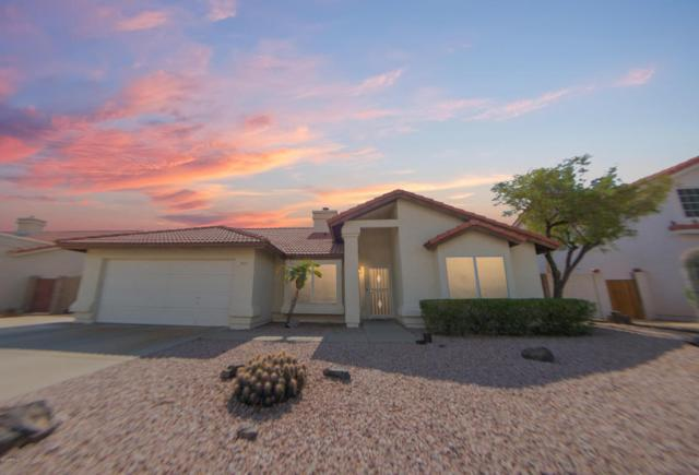 3524 N Canary Circle, Avondale, AZ 85392 (MLS #5793416) :: The AZ Performance Realty Team