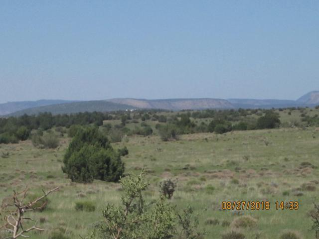 Lot 311 Hyde Park Road, Seligman, AZ 86337 (MLS #5793676) :: The Garcia Group