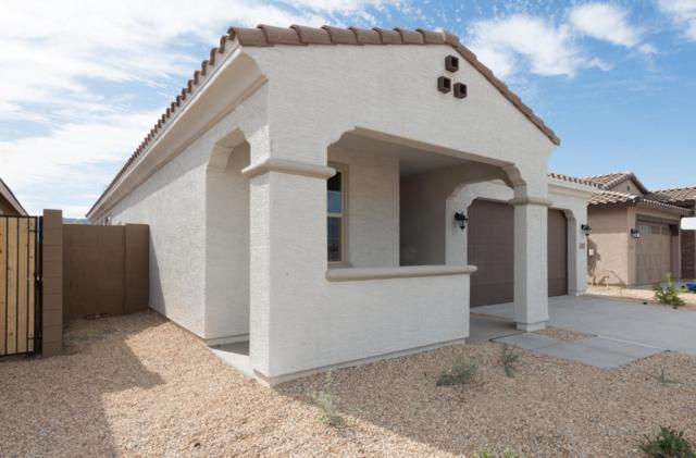 2823 E Sunland Avenue, Phoenix, AZ 85040 (MLS #5793698) :: Kortright Group - West USA Realty