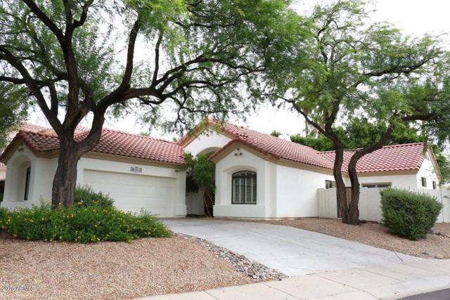 14108 W Greenview Circle N, Litchfield Park, AZ 85340 (MLS #5793726) :: The AZ Performance Realty Team