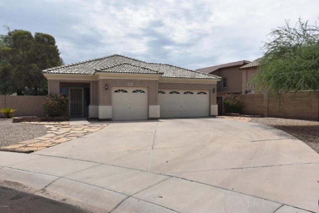 8303 N 56TH Lane, Glendale, AZ 85302 (MLS #5793787) :: REMAX Professionals