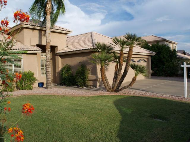 931 N Kenwood Lane, Chandler, AZ 85226 (MLS #5793915) :: Santizo Realty Group