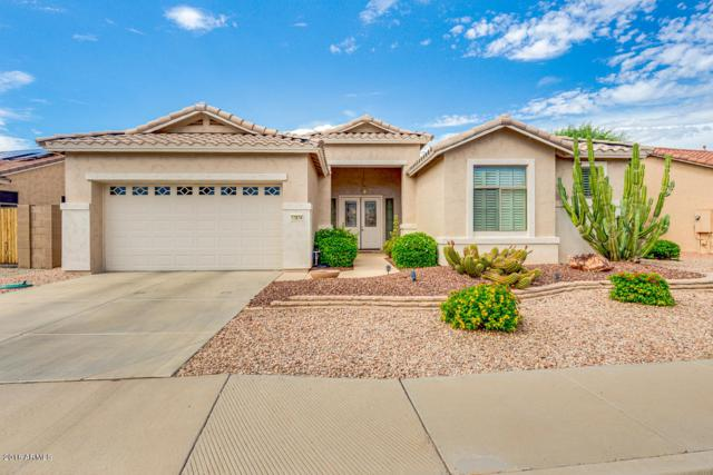 17874 W Spencer Drive, Surprise, AZ 85374 (MLS #5794161) :: Occasio Realty