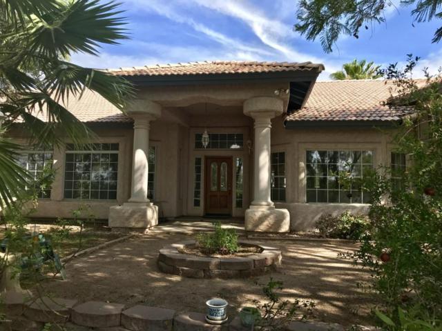 6345 N 125TH Avenue, Litchfield Park, AZ 85340 (MLS #5794727) :: The Sweet Group
