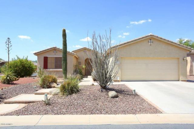 42996 W Whimsical Drive, Maricopa, AZ 85138 (MLS #5794756) :: Santizo Realty Group