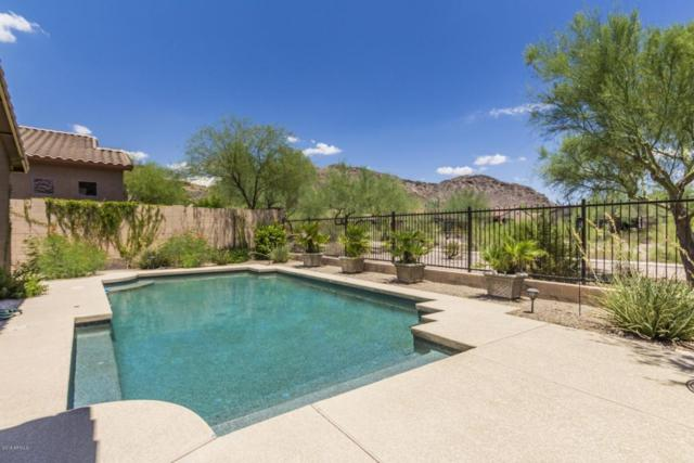27173 N 86TH Avenue, Peoria, AZ 85383 (MLS #5794971) :: The Laughton Team
