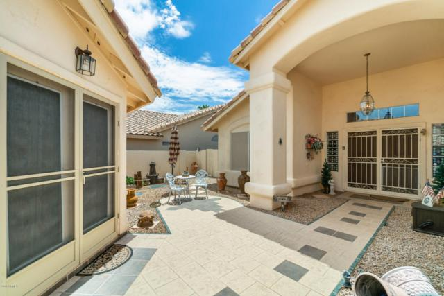 14623 W Morning Star Trail, Surprise, AZ 85374 (MLS #5795135) :: The Sweet Group