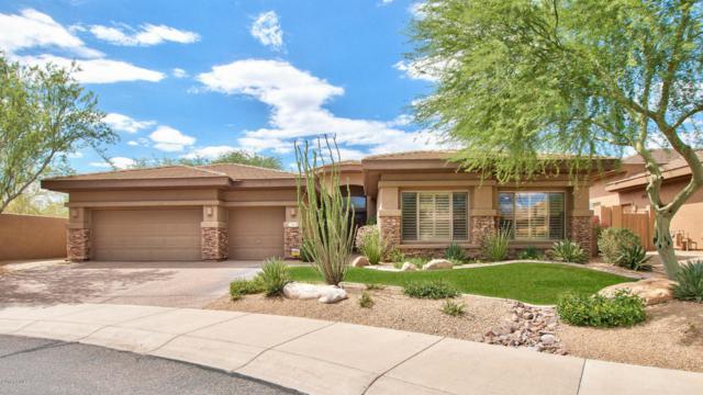 7904 E Quill Lane, Scottsdale, AZ 85255 (MLS #5795262) :: Occasio Realty
