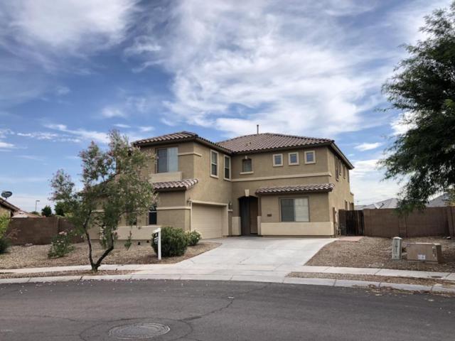 16514 W Grant Street, Goodyear, AZ 85338 (MLS #5795278) :: Keller Williams Realty Phoenix