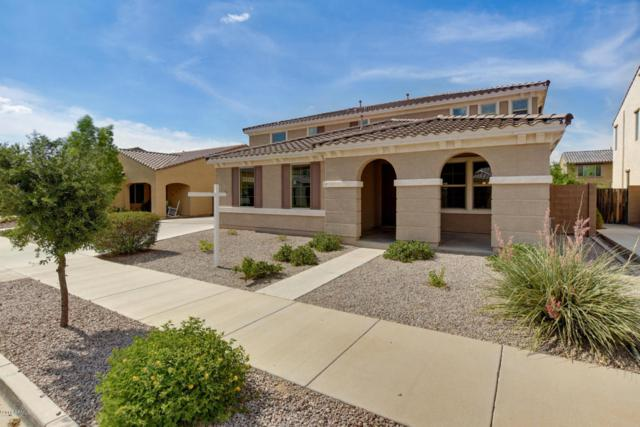 21040 E Sunset Drive, Queen Creek, AZ 85142 (MLS #5795332) :: The Jesse Herfel Real Estate Group