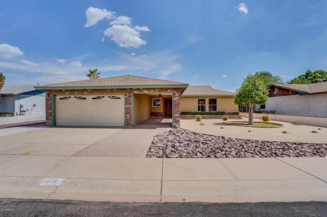 113 W Bluefield Avenue, Phoenix, AZ 85023 (MLS #5795401) :: CC & Co. Real Estate Team