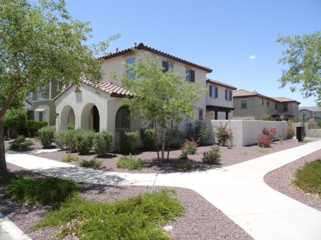 2314 N Valley View Drive, Buckeye, AZ 85396 (MLS #5795539) :: Lifestyle Partners Team