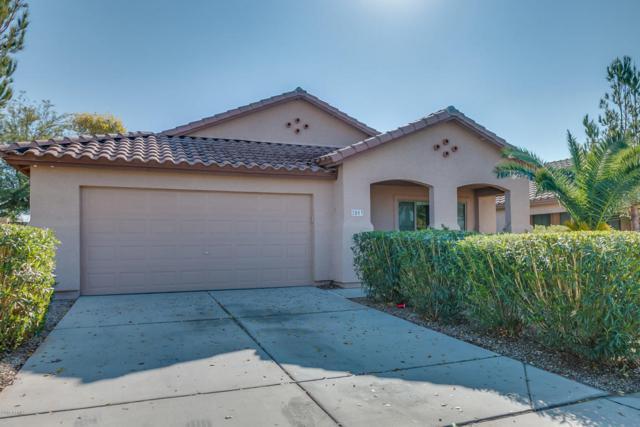 2003 W Pinkley Avenue, Coolidge, AZ 85128 (MLS #5795704) :: Yost Realty Group at RE/MAX Casa Grande