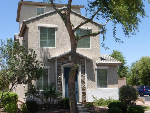 10006 W Winslow Avenue, Tolleson, AZ 85353 (MLS #5796021) :: The Sweet Group