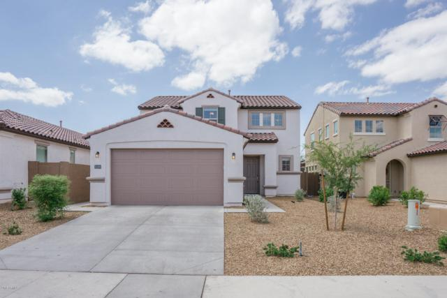 10189 W Los Gatos Drive, Peoria, AZ 85383 (MLS #5796136) :: CC & Co. Real Estate Team