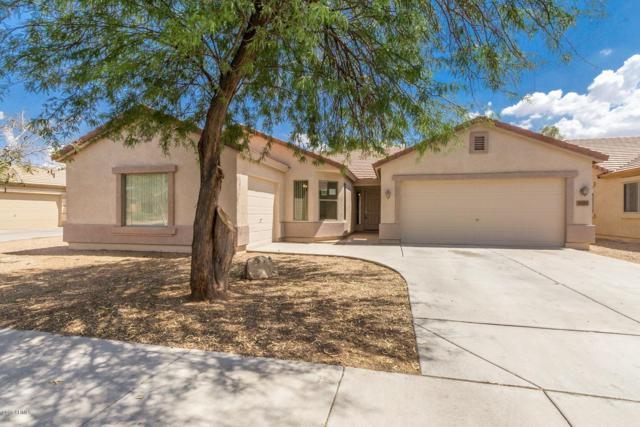 43223 W Oster Drive, Maricopa, AZ 85138 (MLS #5796374) :: Yost Realty Group at RE/MAX Casa Grande