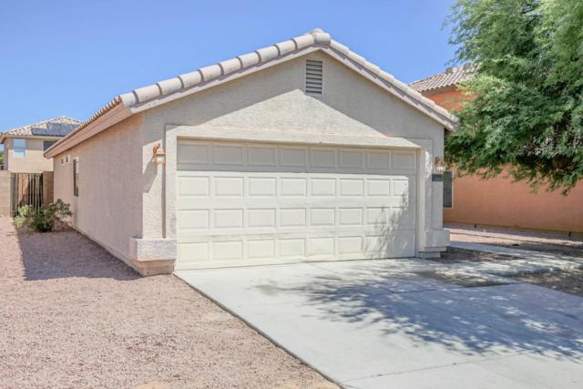 12911 N Palm Street, El Mirage, AZ 85335 (MLS #5796588) :: Gilbert Arizona Realty