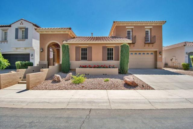3395 S Ashley Drive, Chandler, AZ 85286 (MLS #5796941) :: CANAM Realty Group