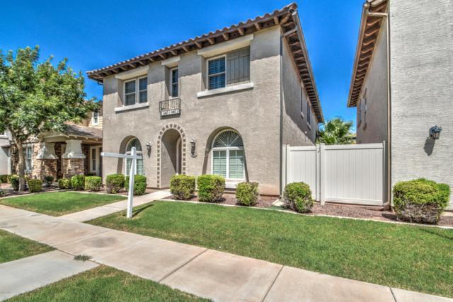 854 S Huish Drive, Gilbert, AZ 85296 (MLS #5797098) :: Occasio Realty