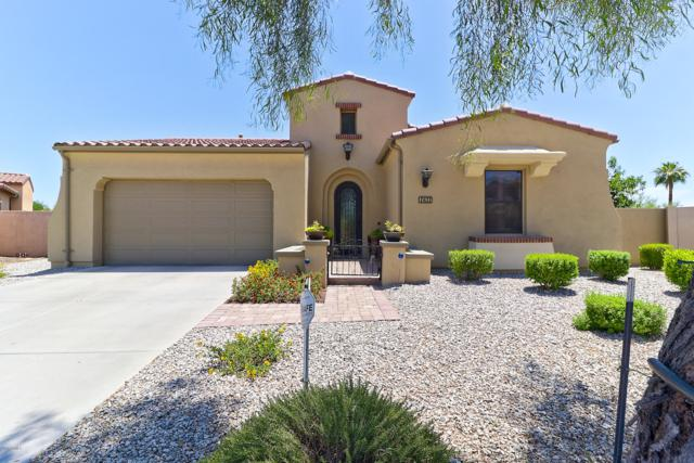 1631 N 144TH Avenue, Goodyear, AZ 85395 (MLS #5797414) :: Conway Real Estate