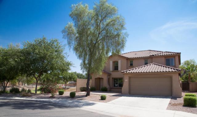 33199 N Sonoran Trail, Queen Creek, AZ 85142 (MLS #5797614) :: Yost Realty Group at RE/MAX Casa Grande