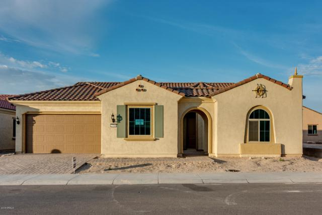 27546 W Tonopah Drive, Buckeye, AZ 85396 (MLS #5797958) :: The Results Group