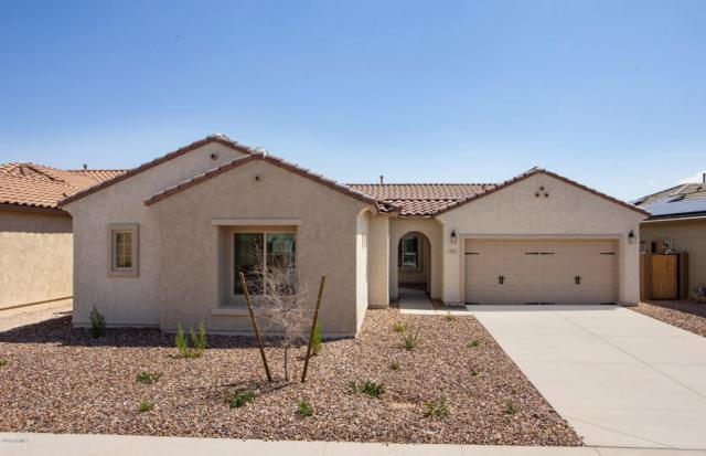 7011 W Springfield Way, Florence, AZ 85132 (MLS #5798445) :: Occasio Realty