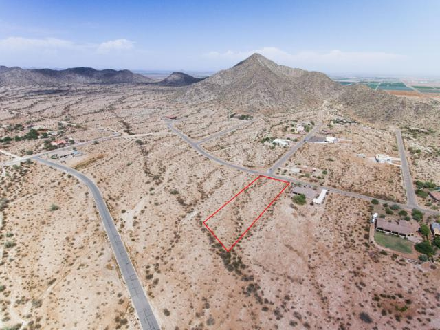 8444 N Buena Vista Drive, Casa Grande, AZ 85194 (MLS #5799058) :: The W Group