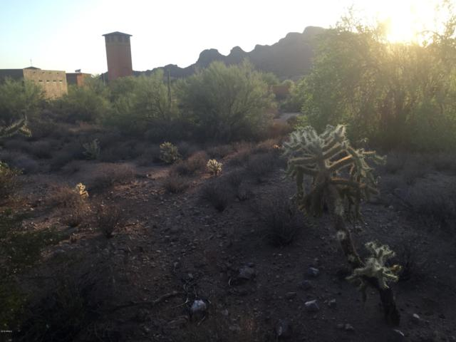 5256 S Via De Rico Way, Gold Canyon, AZ 85118 (MLS #5799125) :: CC & Co. Real Estate Team