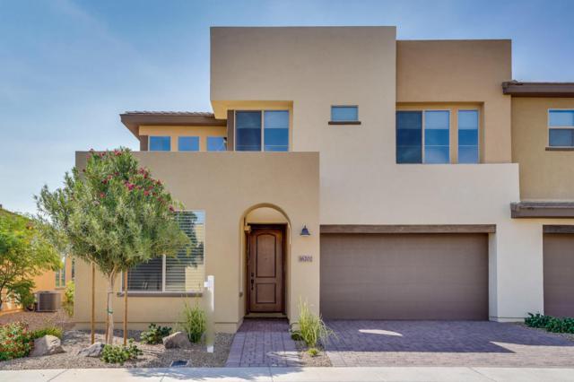 36202 N Desert Tea Drive, San Tan Valley, AZ 85140 (MLS #5799589) :: Yost Realty Group at RE/MAX Casa Grande